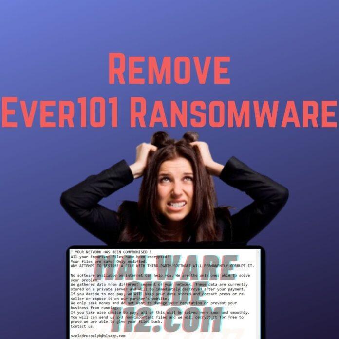 #remove ever101 ransomware
