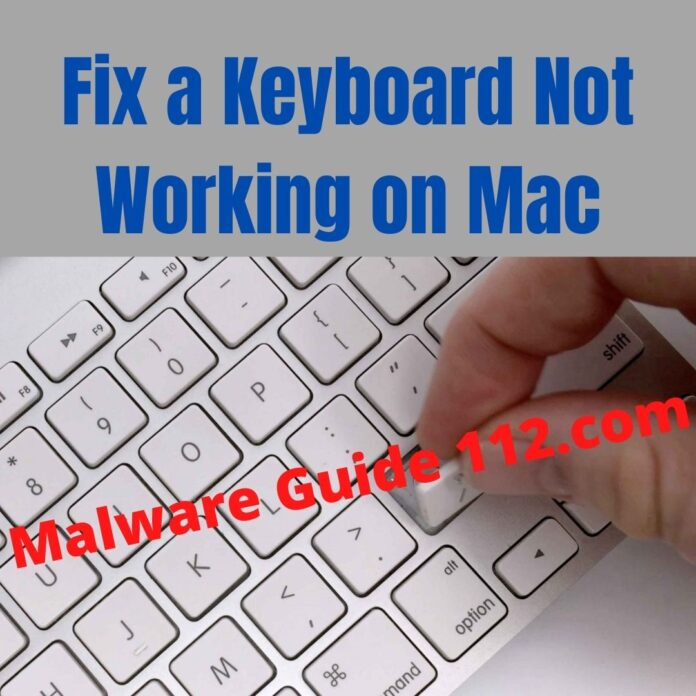 Fix a Keyboard Not Working on Mac