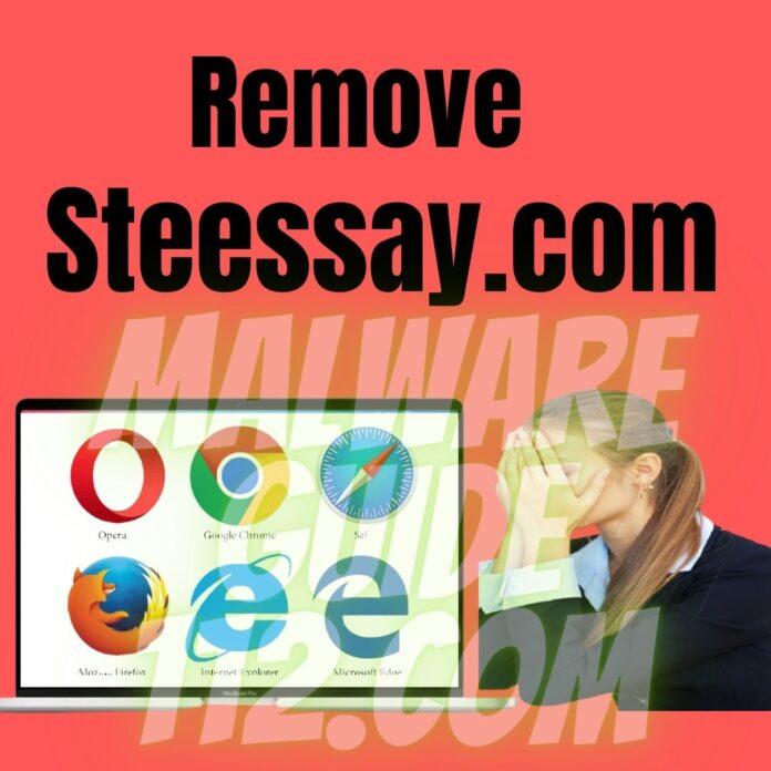 Remove Steessay.com