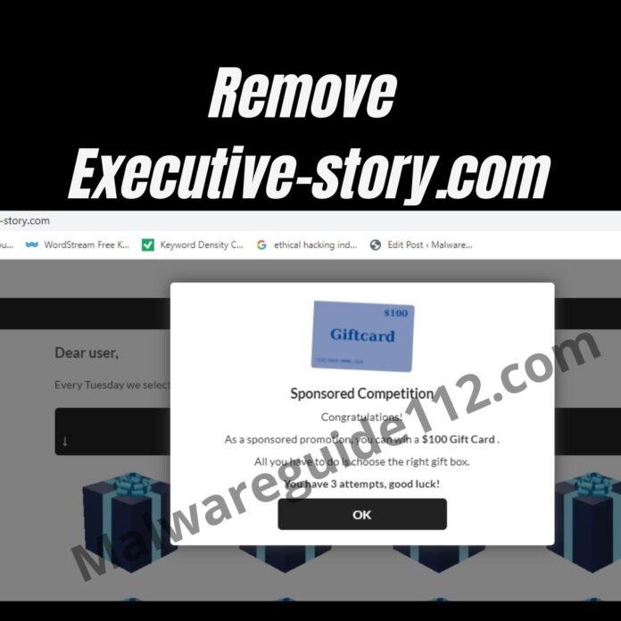 Remove Executive-story.com